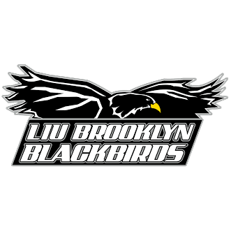 LIU Brooklyn